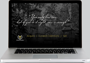 TrophyHomes.com on an Apple laptop